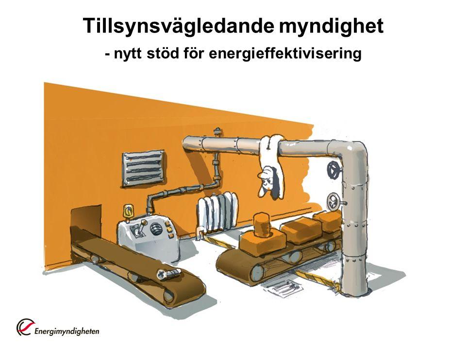 Tillsynsvägledande myndighet - nytt stöd för energieffektivisering