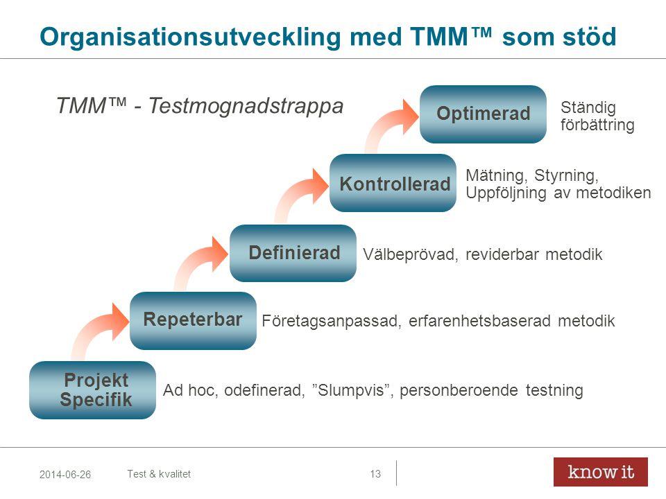 Organisationsutveckling med TMM™ som stöd