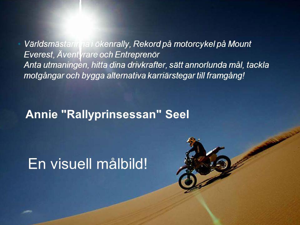 En visuell målbild! Annie Rallyprinsessan Seel