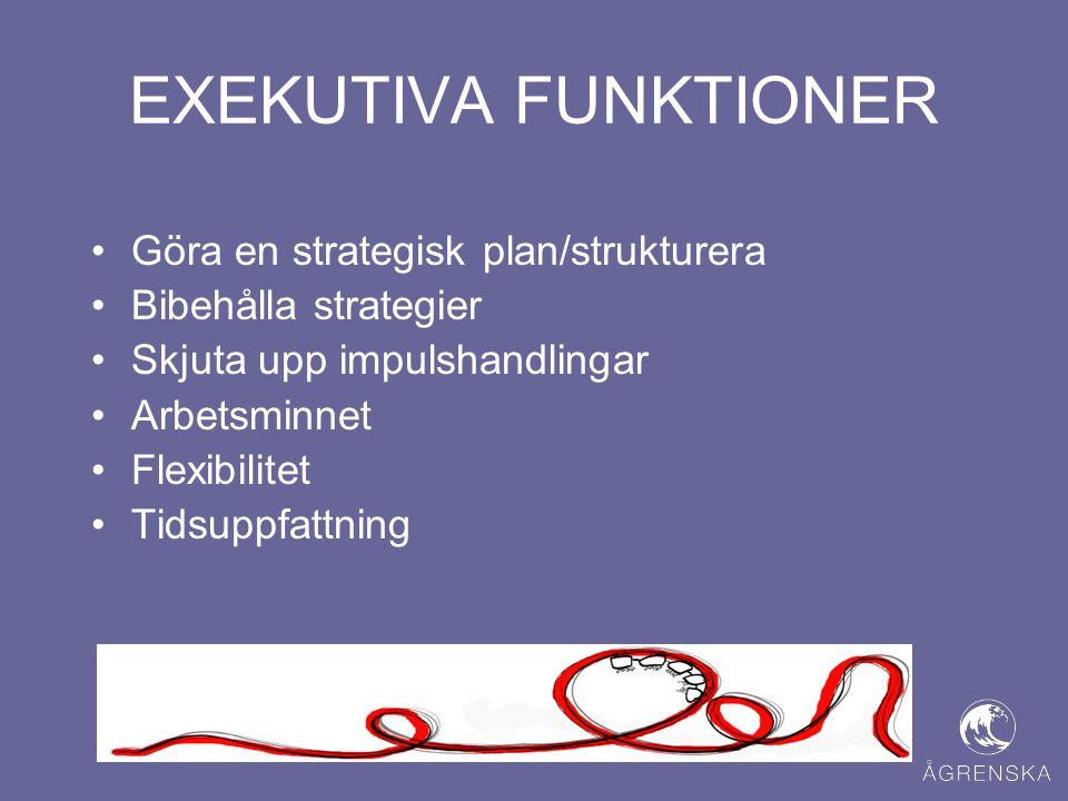 EXEKUTIVA FUNKTIONER Göra en strategisk plan/strukturera