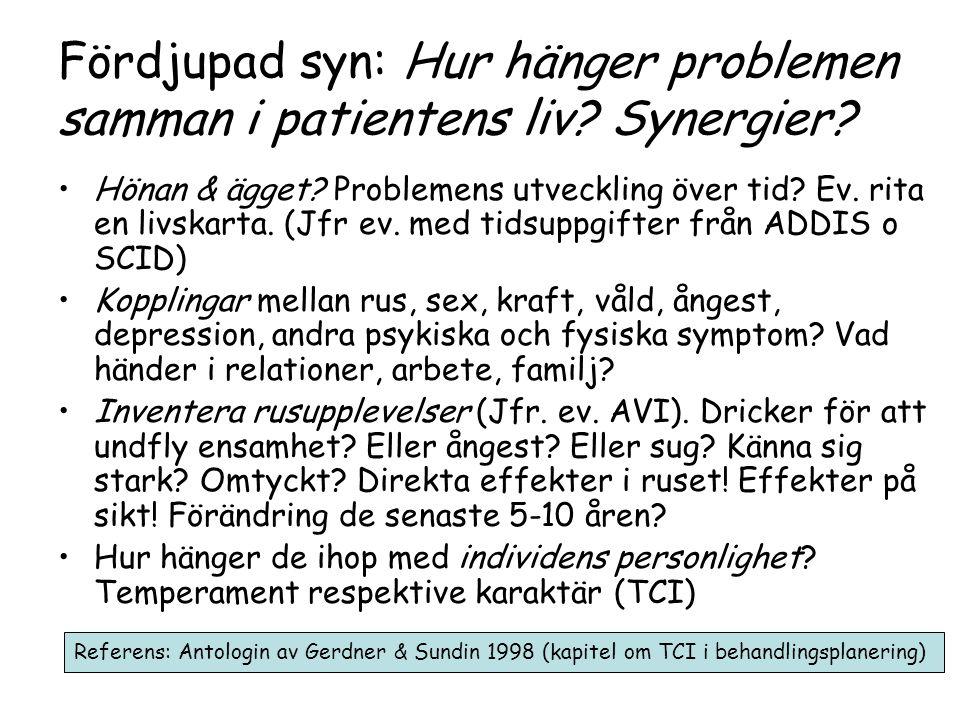 Fördjupad syn: Hur hänger problemen samman i patientens liv Synergier