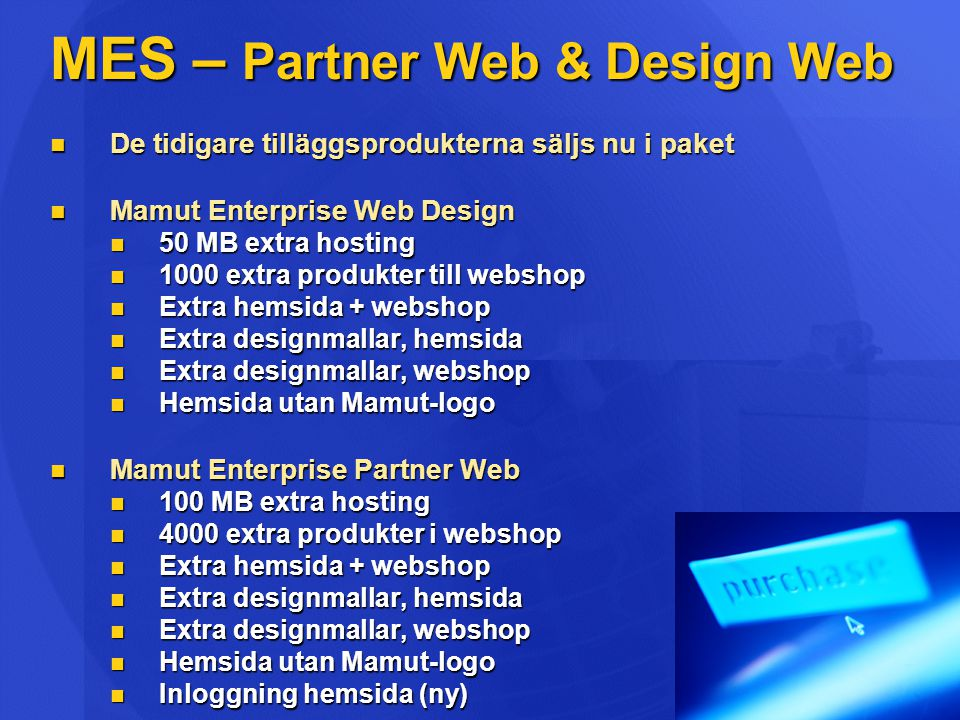 MES – Partner Web & Design Web