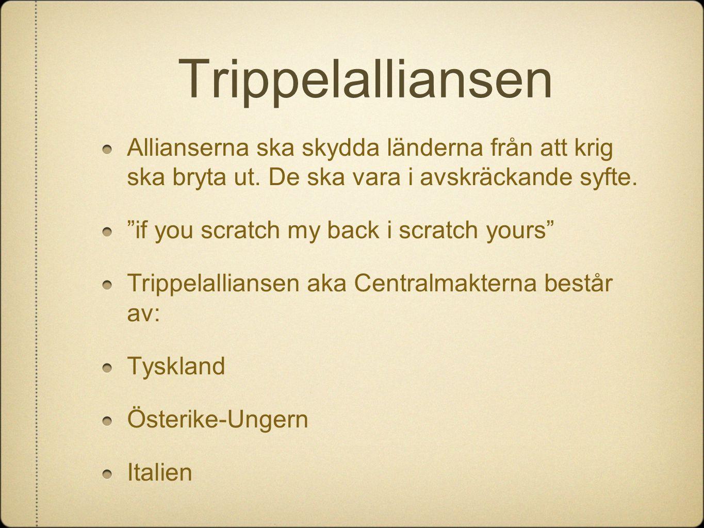 Trippelalliansen Allianserna ska skydda länderna från att krig ska bryta ut. De ska vara i avskräckande syfte.