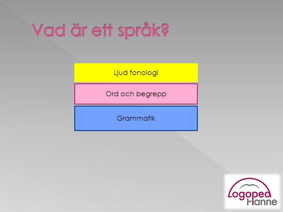 Vad är ett språk Ljud fonologi Ord och begrepp Grammatik