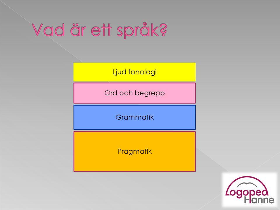 Vad är ett språk Ljud fonologi Ord och begrepp Grammatik Pragmatik