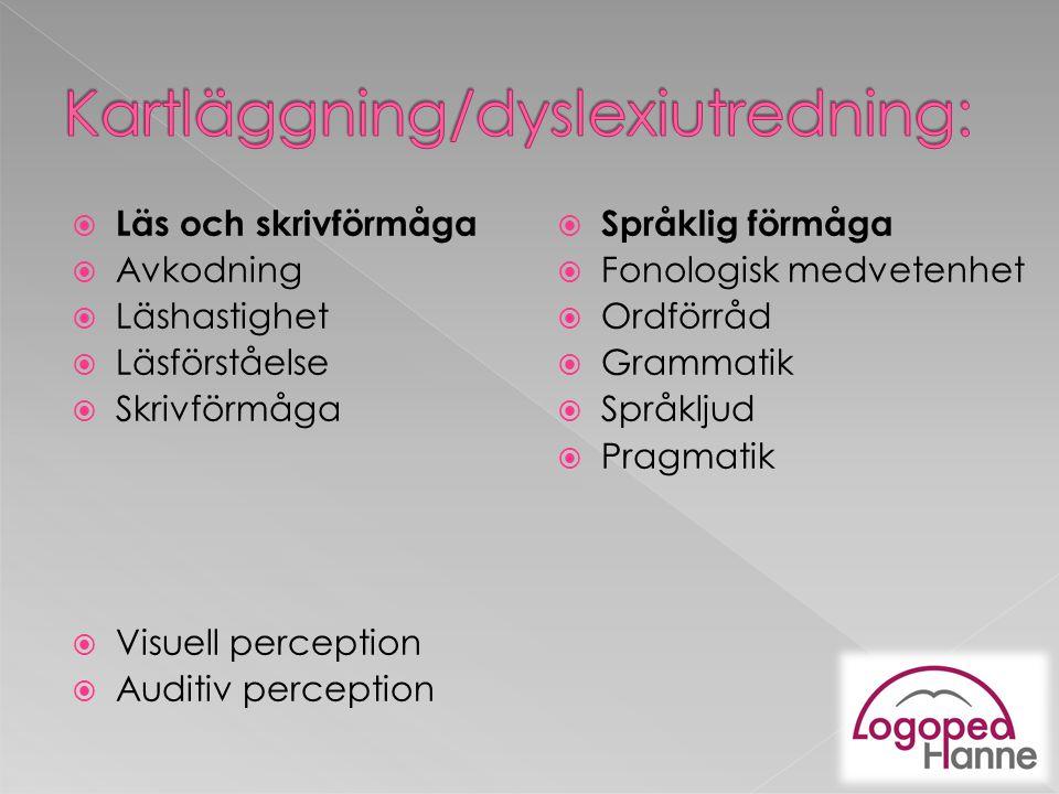 Kartläggning/dyslexiutredning: