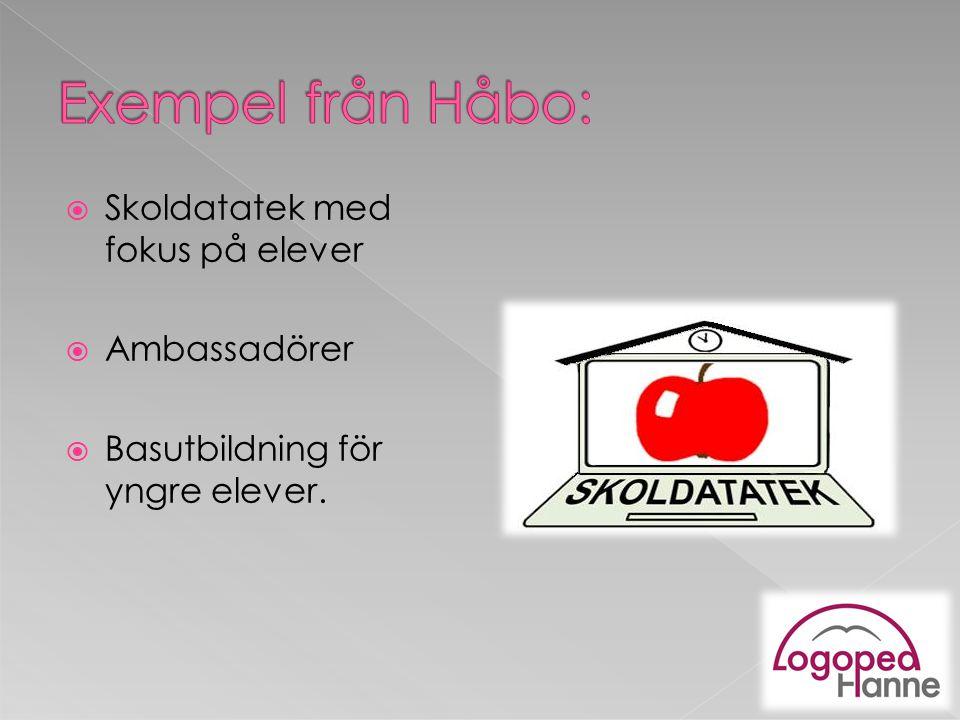 Exempel från Håbo: Skoldatatek med fokus på elever Ambassadörer