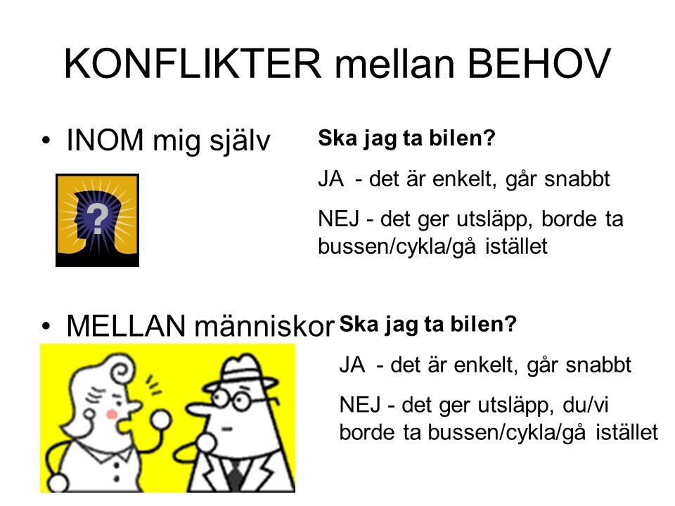 KONFLIKTER mellan BEHOV
