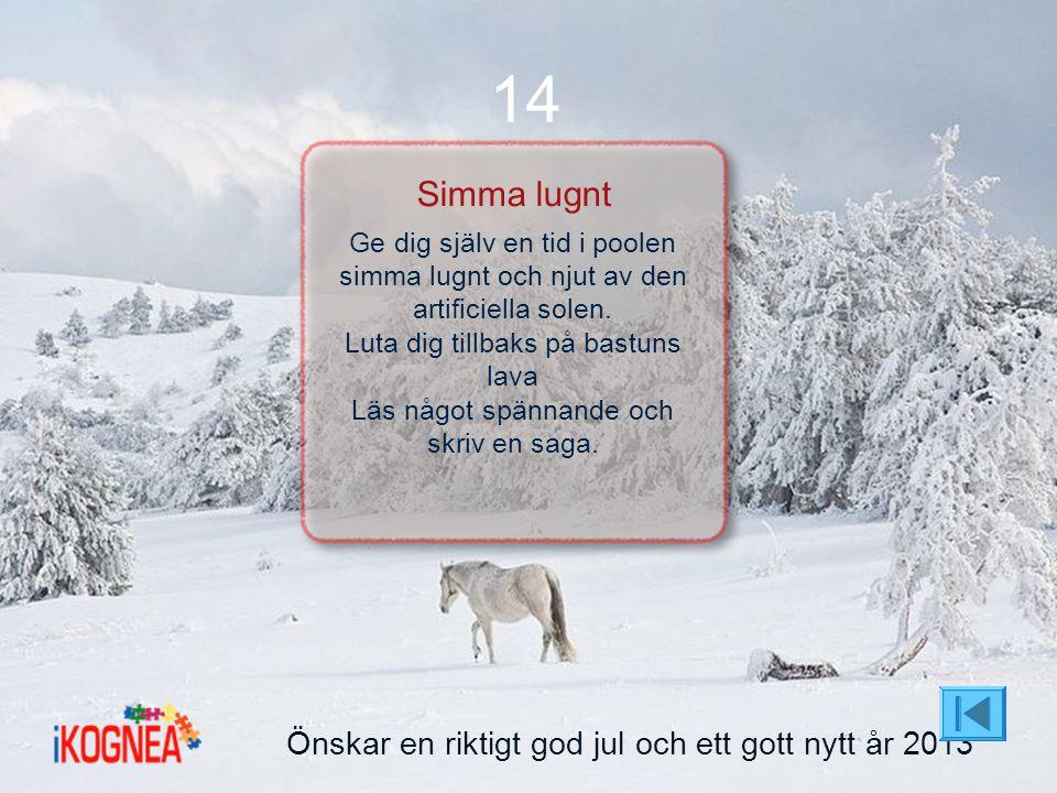 14 Simma lugnt Önskar en riktigt god jul och ett gott nytt år 2013