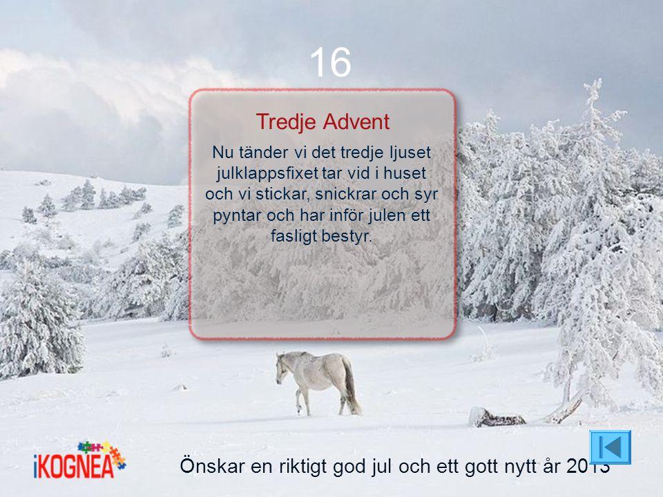 16 Tredje Advent Önskar en riktigt god jul och ett gott nytt år 2013