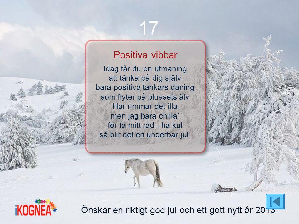 17 Positiva vibbar Önskar en riktigt god jul och ett gott nytt år 2013