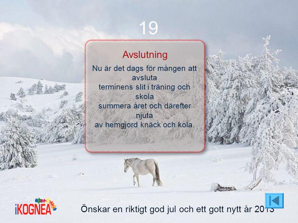 19 Avslutning Önskar en riktigt god jul och ett gott nytt år 2013