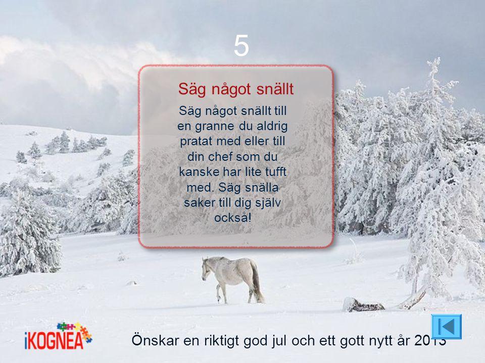5 Säg något snällt Önskar en riktigt god jul och ett gott nytt år 2013