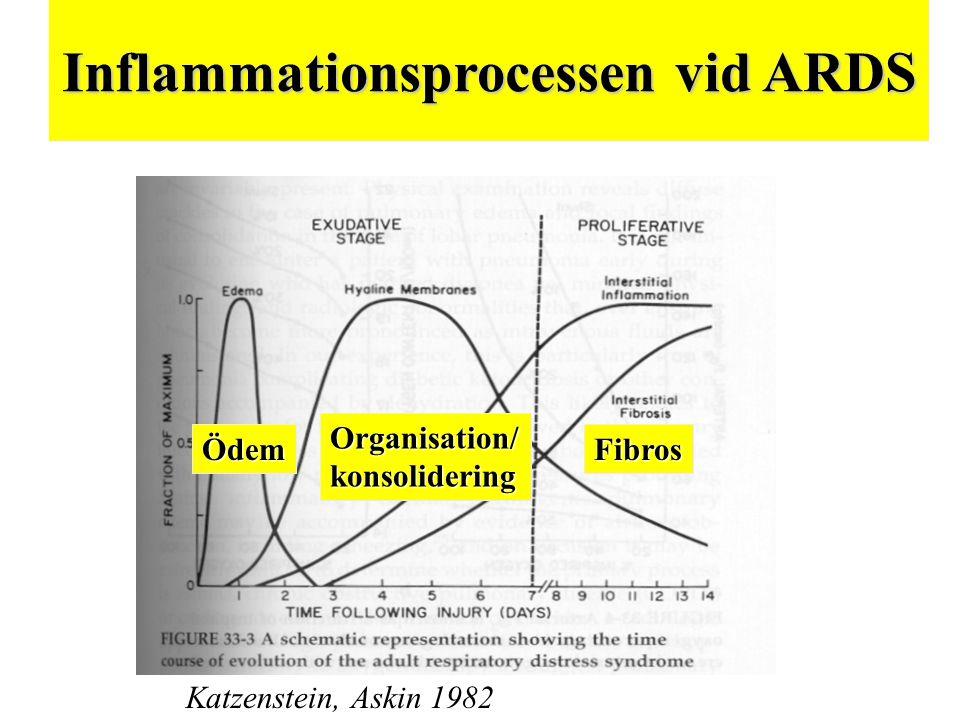Inflammationsprocessen vid ARDS