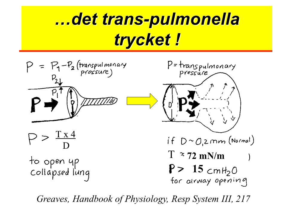 …det trans-pulmonella trycket !