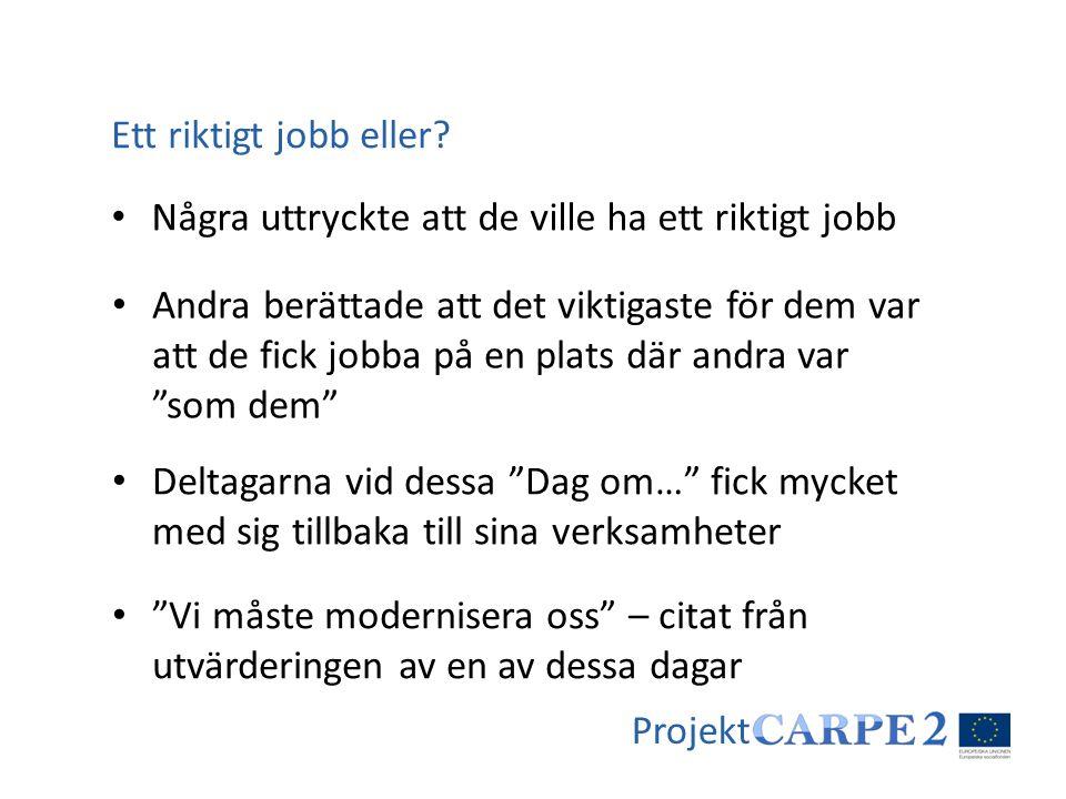 Ett riktigt jobb eller Några uttryckte att de ville ha ett riktigt jobb.