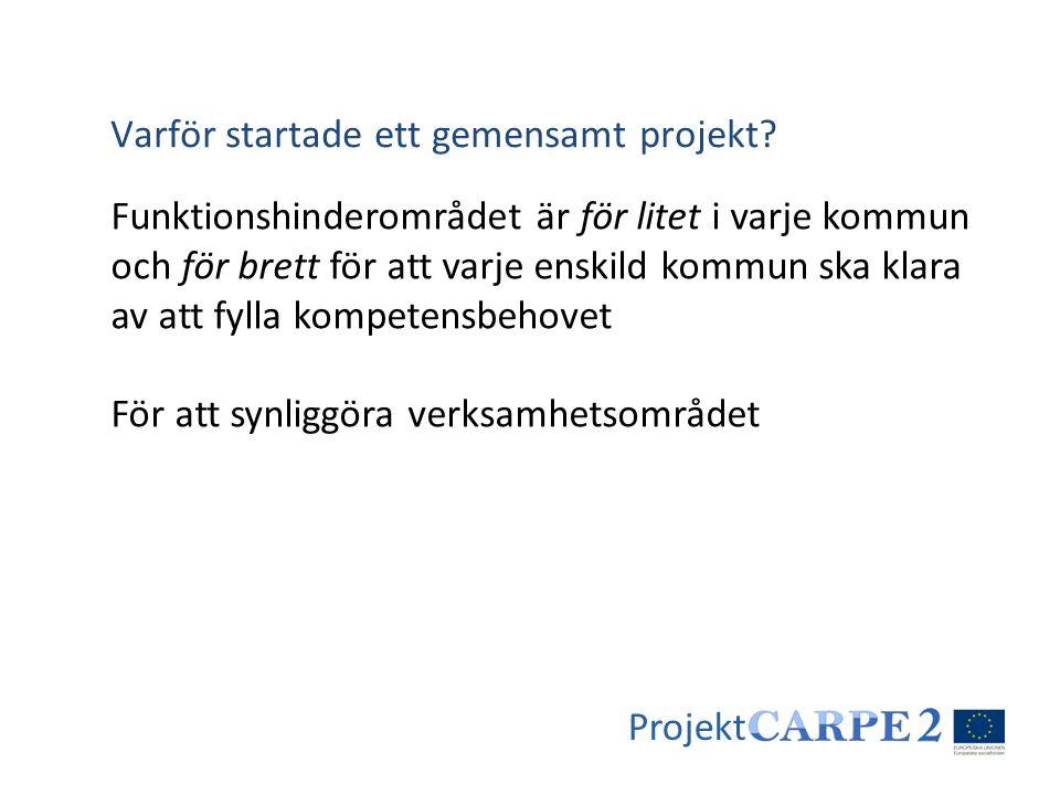 Varför startade ett gemensamt projekt