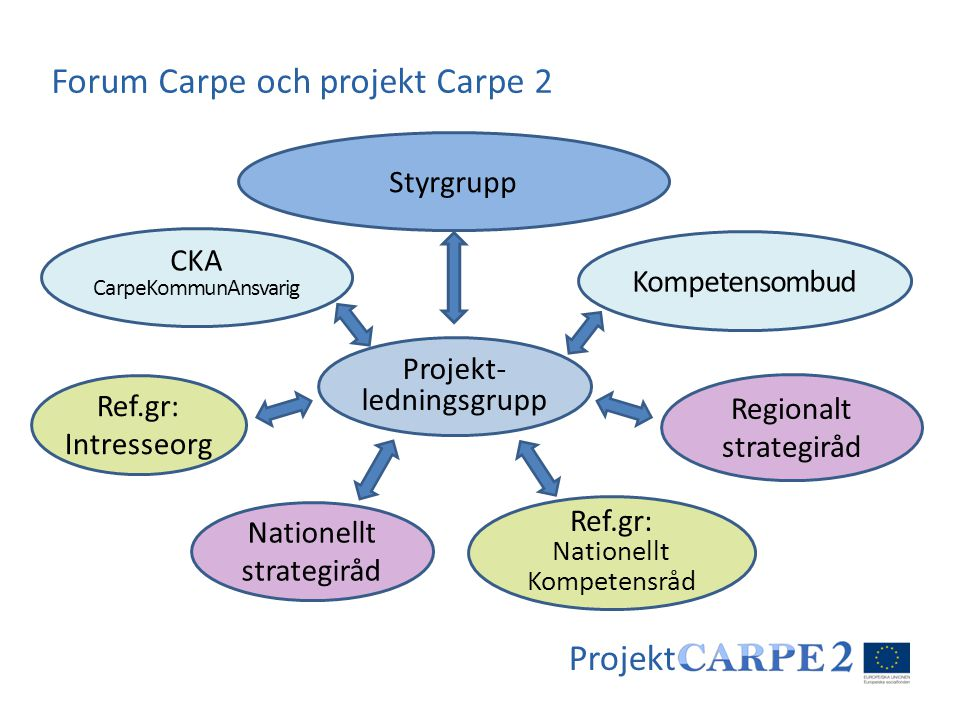 Forum Carpe och projekt Carpe 2