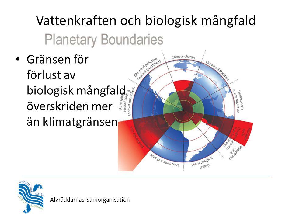 Vattenkraften och biologisk mångfald