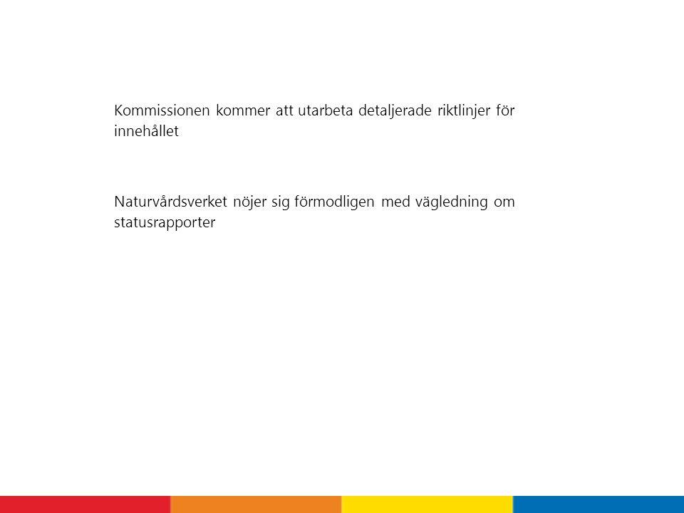 Kommissionen kommer att utarbeta detaljerade riktlinjer för innehållet