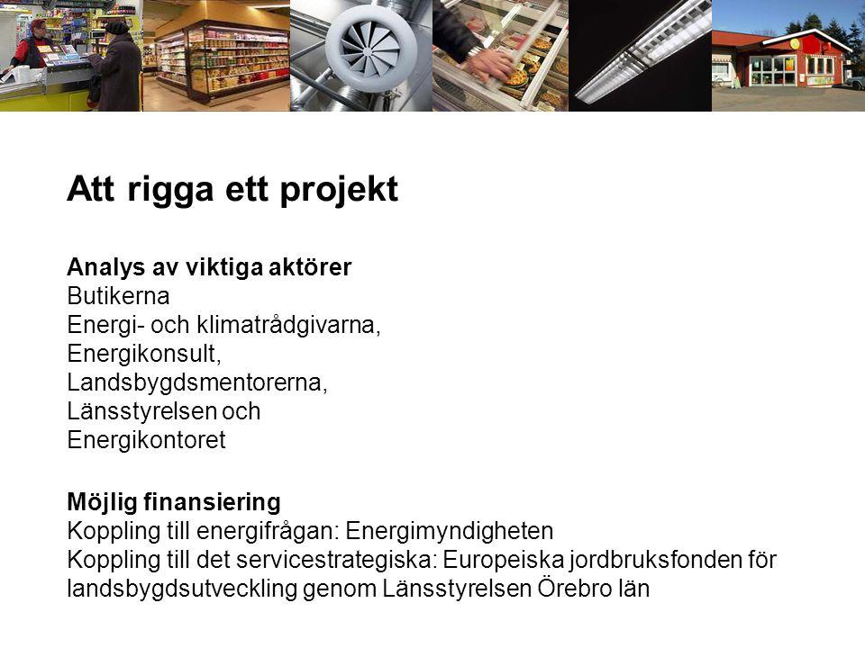 Att rigga ett projekt Analys av viktiga aktörer Butikerna Energi- och klimatrådgivarna, Energikonsult, Landsbygdsmentorerna, Länsstyrelsen och Energikontoret