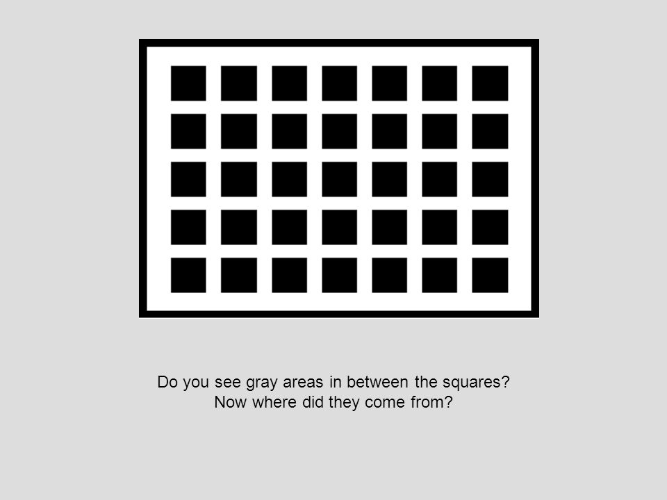 Do you see gray areas in between the squares