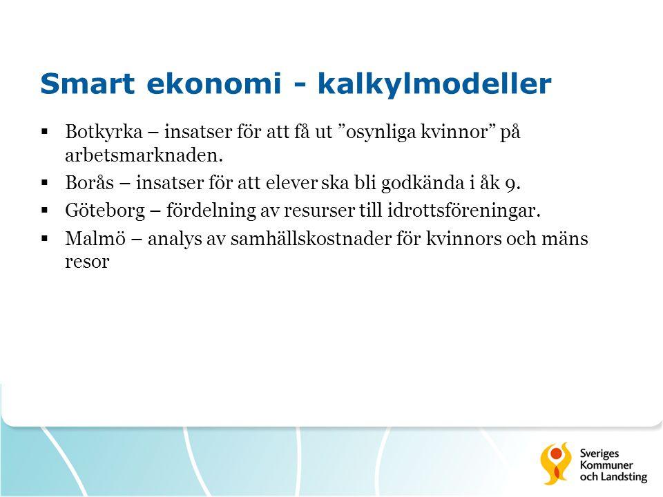 Smart ekonomi - kalkylmodeller