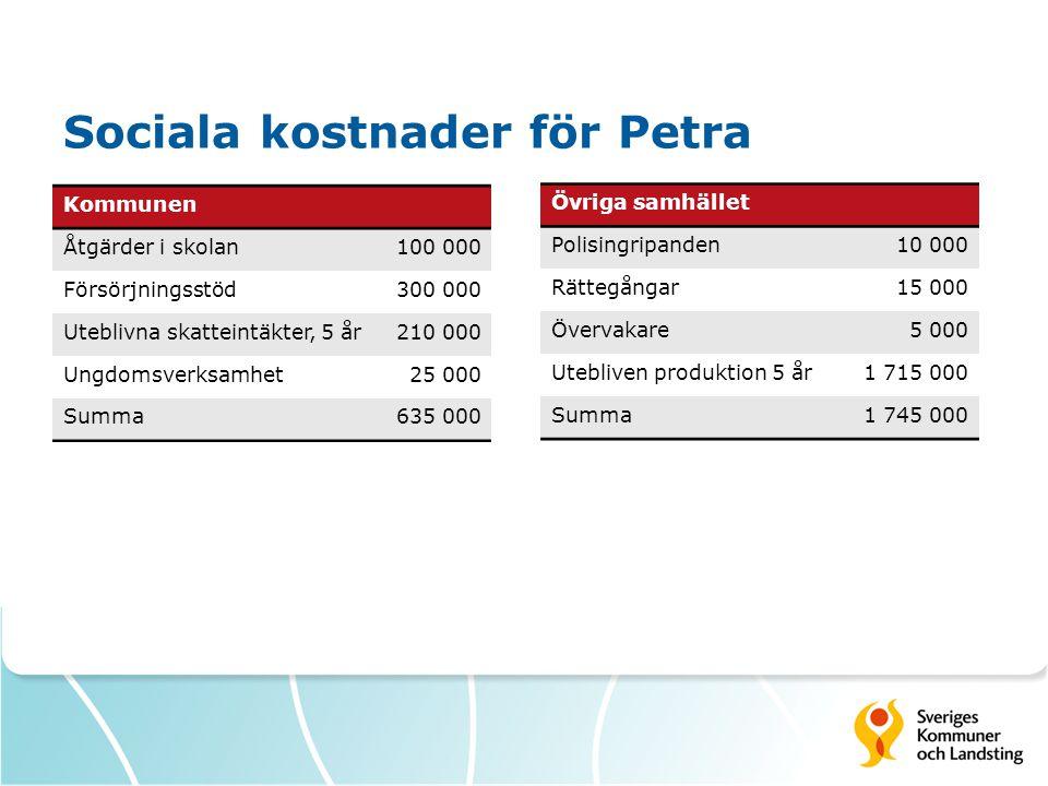 Sociala kostnader för Petra