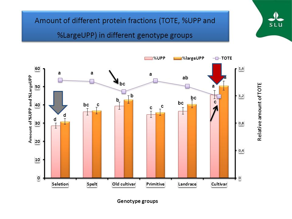 Amount of different protein fractions (TOTE, %UPP and %LargeUPP) in different genotype groups