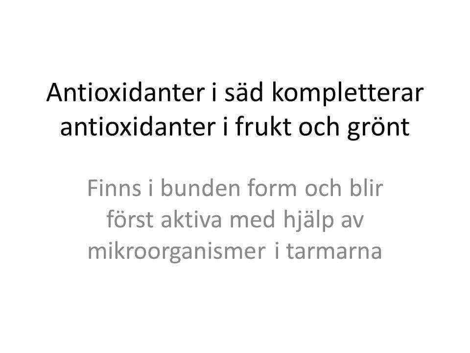 Antioxidanter i säd kompletterar antioxidanter i frukt och grönt
