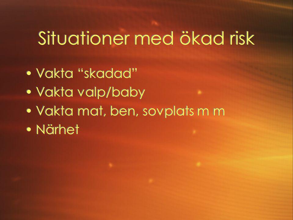 Situationer med ökad risk