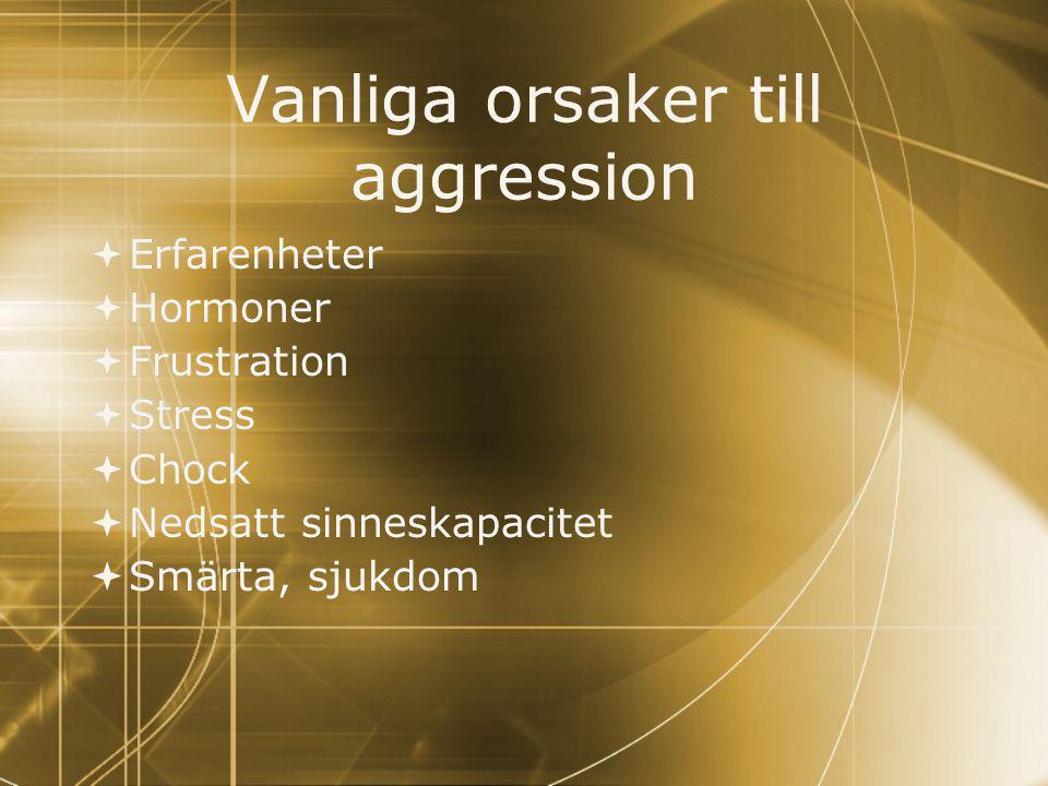 Vanliga orsaker till aggression