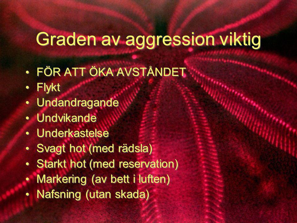 Graden av aggression viktig