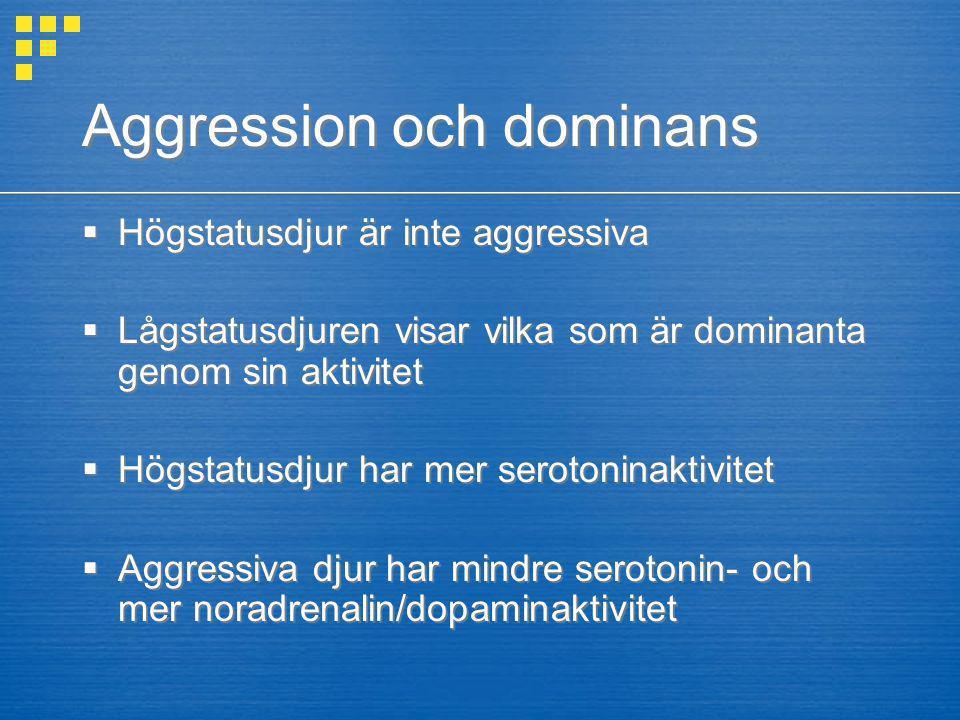 Aggression och dominans