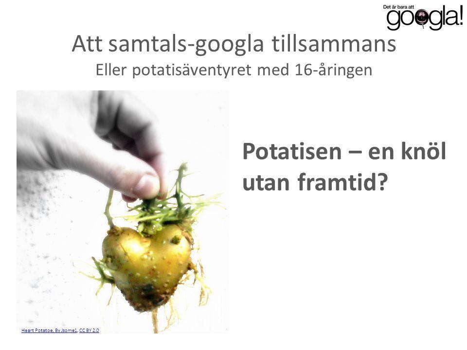 Att samtals-googla tillsammans Eller potatisäventyret med 16-åringen