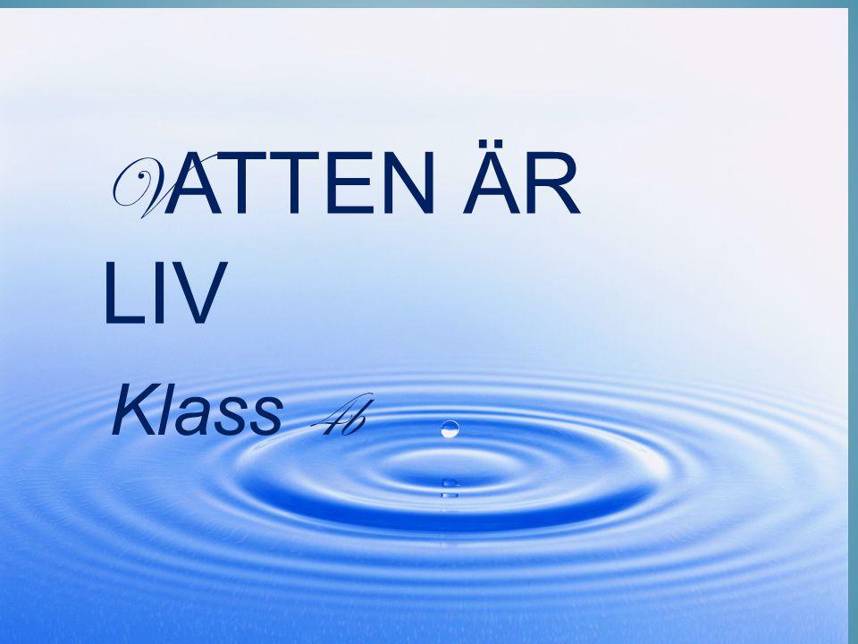 Vatten är liv Klass 4b