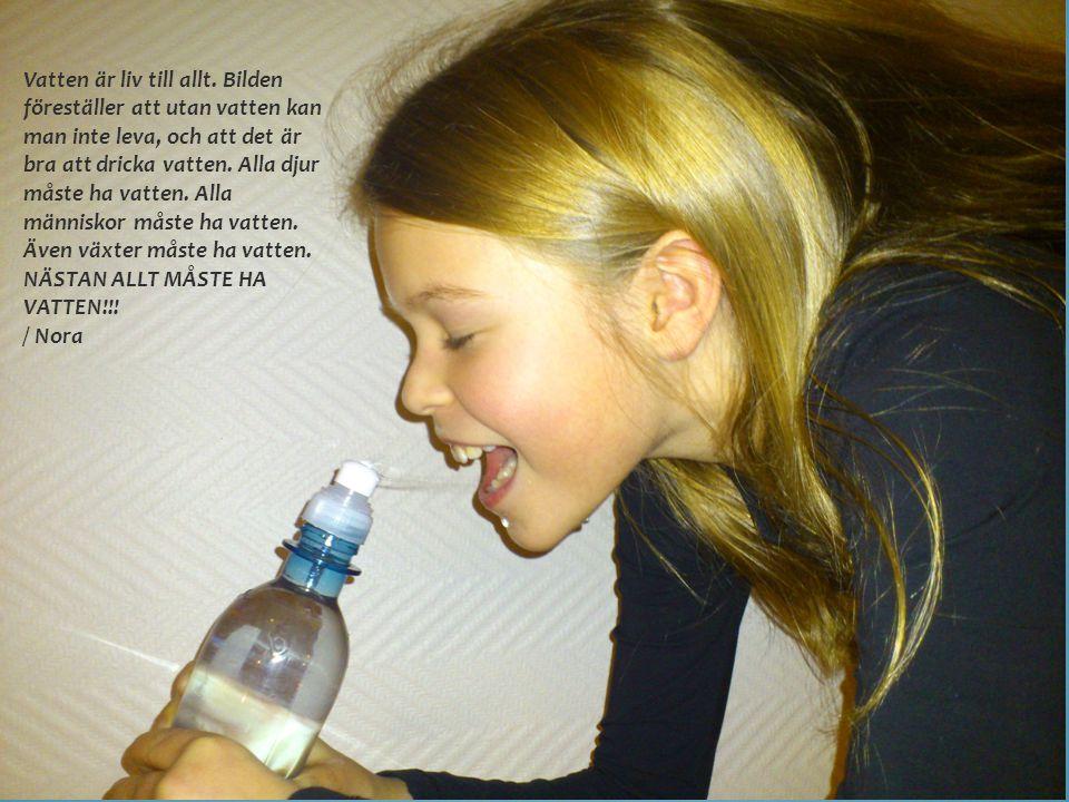 Vatten är liv till allt.