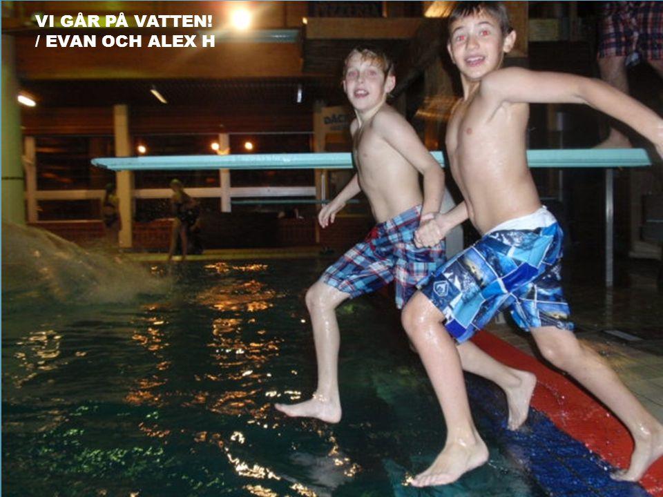 Vi går på vatten! / Evan och Alex H
