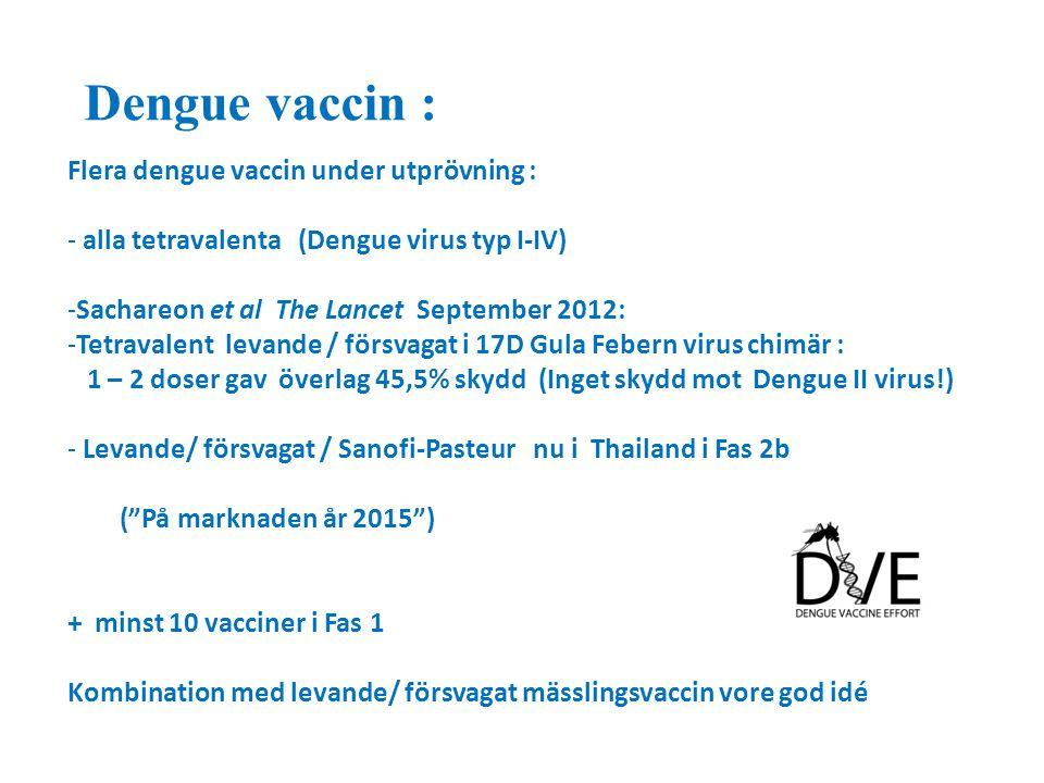 Dengue vaccin : Flera dengue vaccin under utprövning :