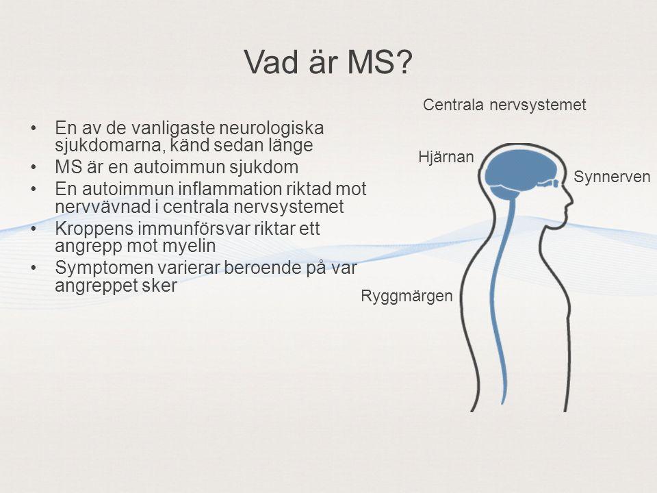 Vad är MS Centrala nervsystemet. En av de vanligaste neurologiska sjukdomarna, känd sedan länge. MS är en autoimmun sjukdom.