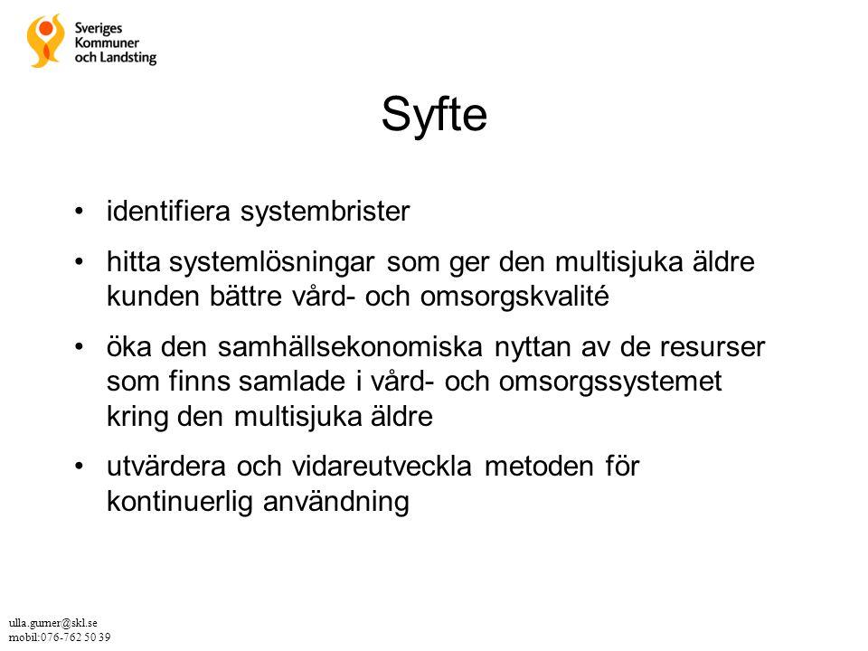 Syfte identifiera systembrister