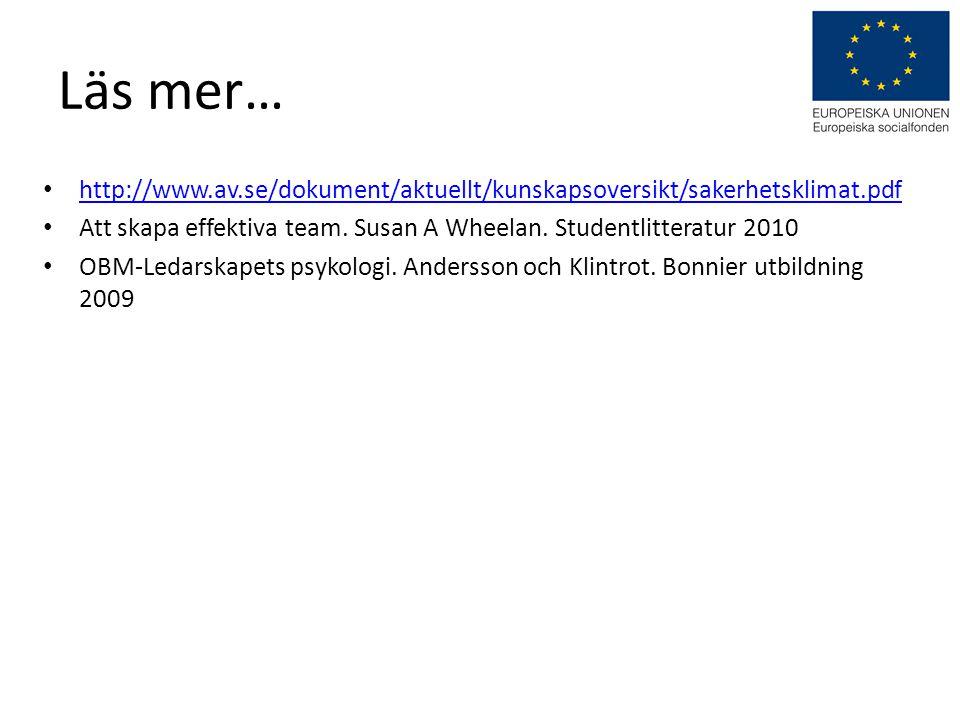 Läs mer… http://www.av.se/dokument/aktuellt/kunskapsoversikt/sakerhetsklimat.pdf. Att skapa effektiva team. Susan A Wheelan. Studentlitteratur 2010.