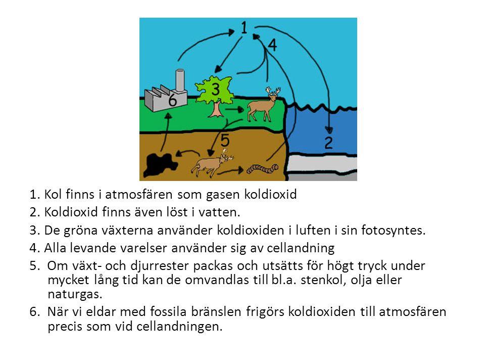 1. Kol finns i atmosfären som gasen koldioxid