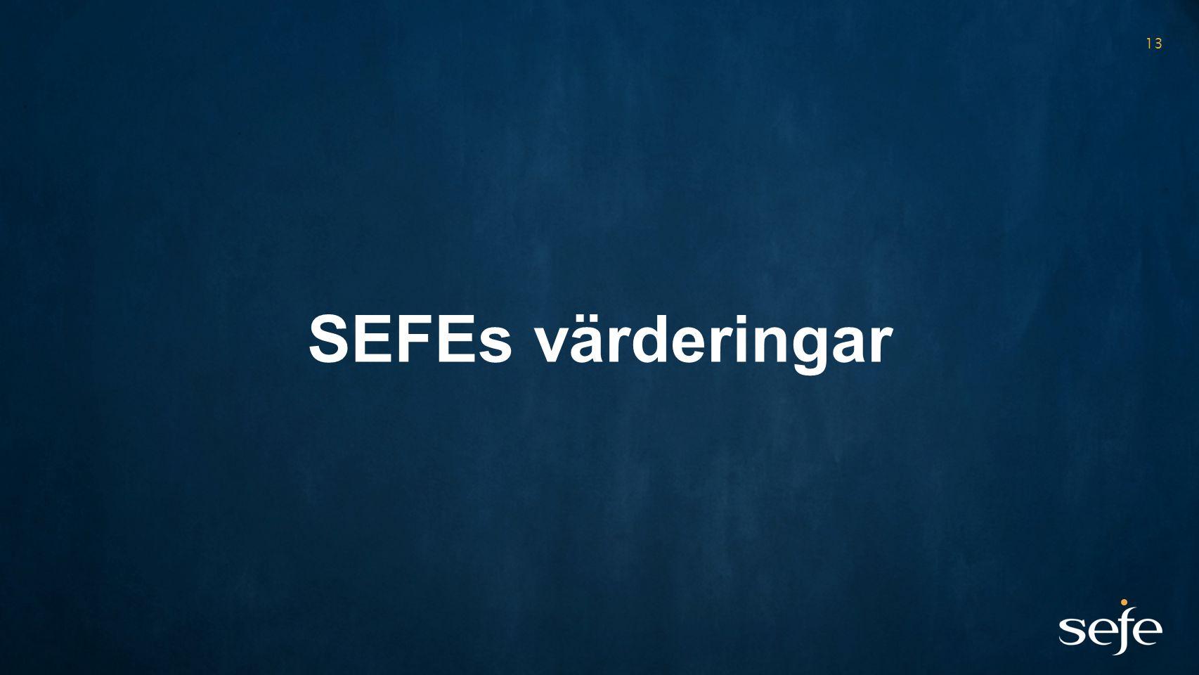 13 SEFEs värderingar