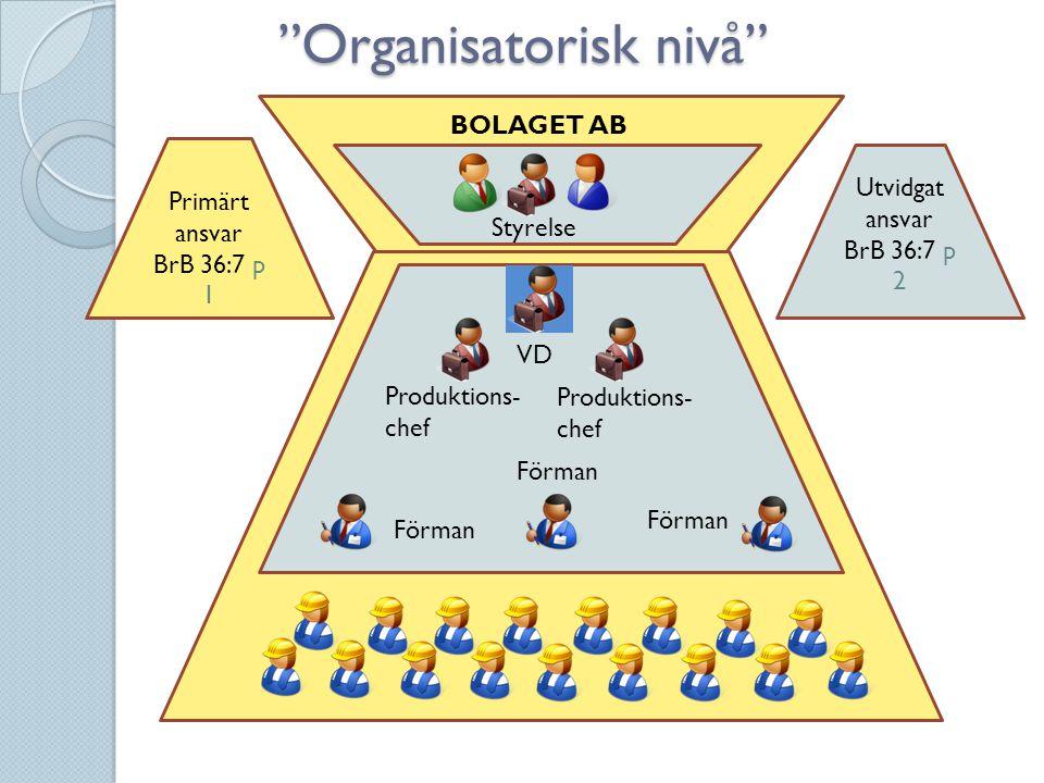 Organisatorisk nivå