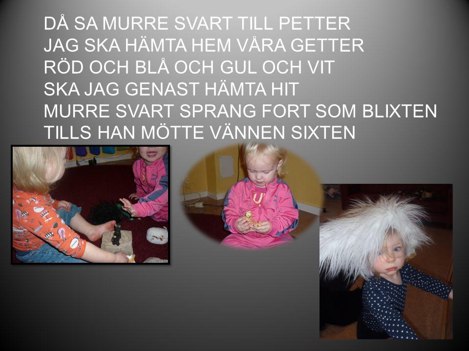 DÅ SA MURRE SVART TILL PETTER