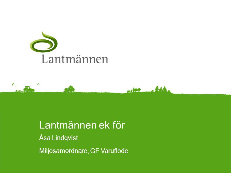 Åsa Lindqvist Miljösamordnare, GF Varuflöde