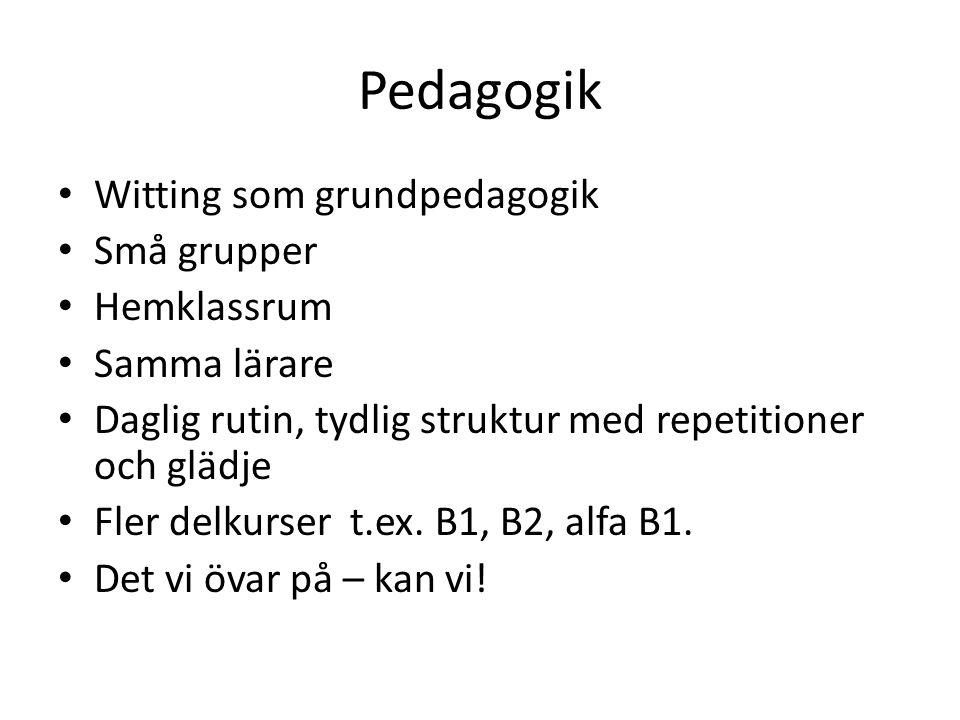 Pedagogik Witting som grundpedagogik Små grupper Hemklassrum