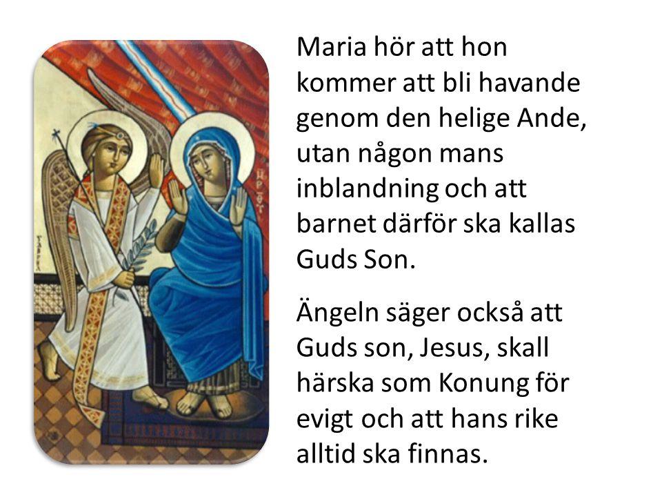 Maria hör att hon kommer att bli havande genom den helige Ande, utan någon mans inblandning och att barnet därför ska kallas Guds Son.