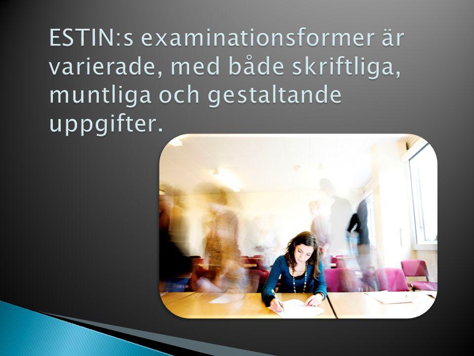 ESTIN:s examinationsformer är varierade, med både skriftliga, muntliga och gestaltande uppgifter.